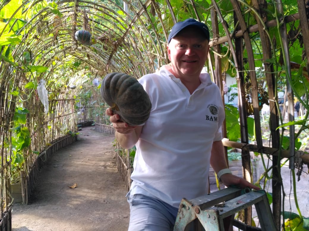 Local Pumpkins growing at Bawah Reserve permaculture gardens