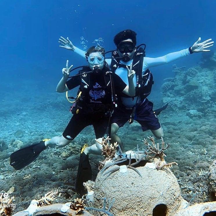 Diving Bawah Anambas Foundation Coral Transplantation