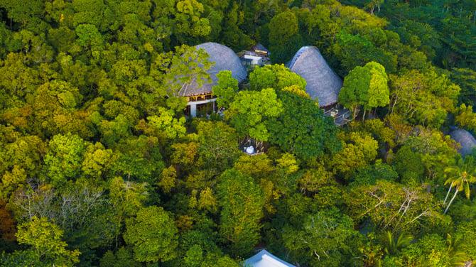 TreeTops-at-bawah-reserve
