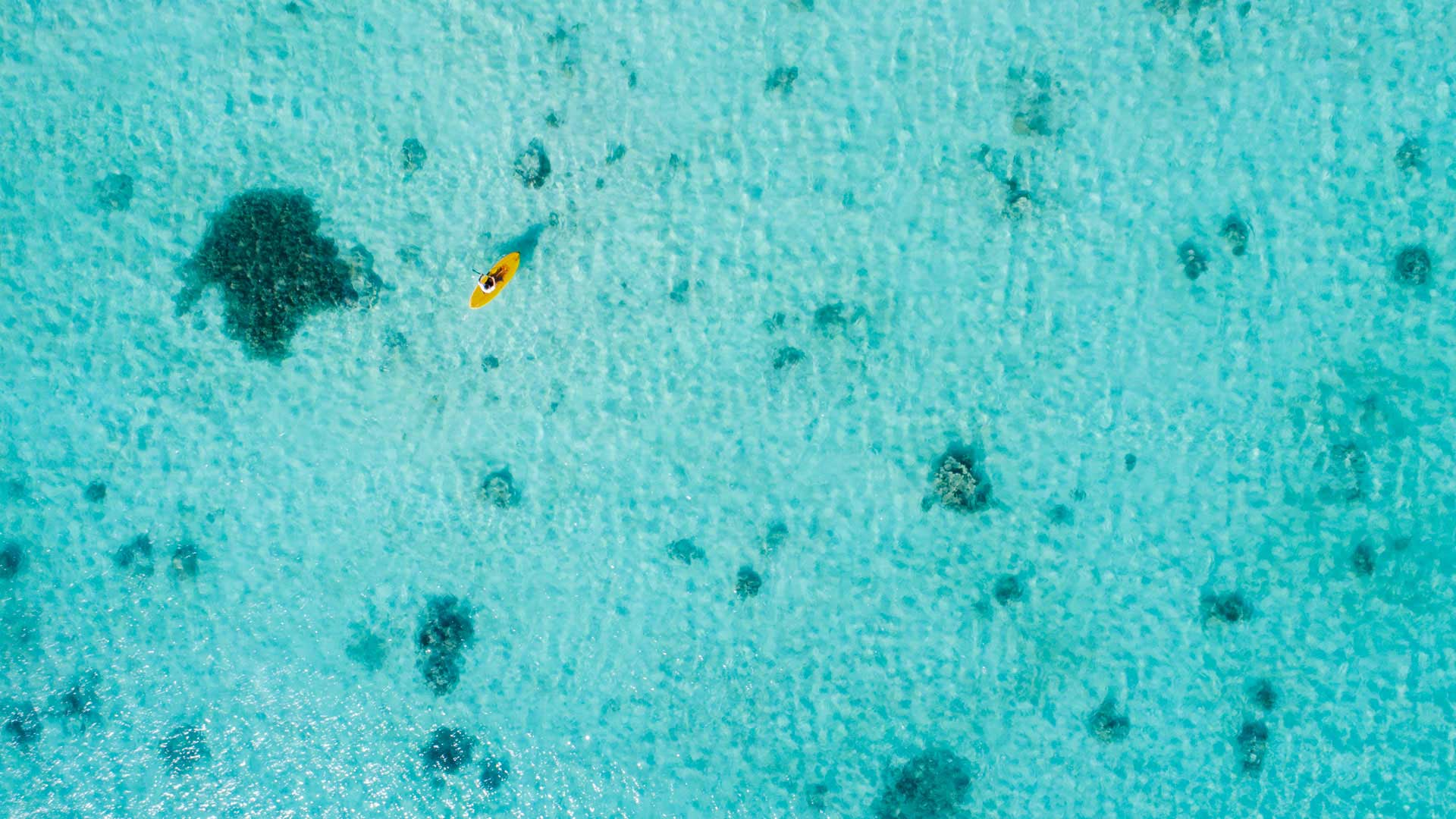 bawahreserve-yellow_sea-kayaking_lagoon-zoom-bg