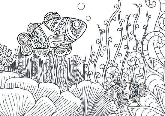 bawahreserve-zentangle-clownfish-01-01