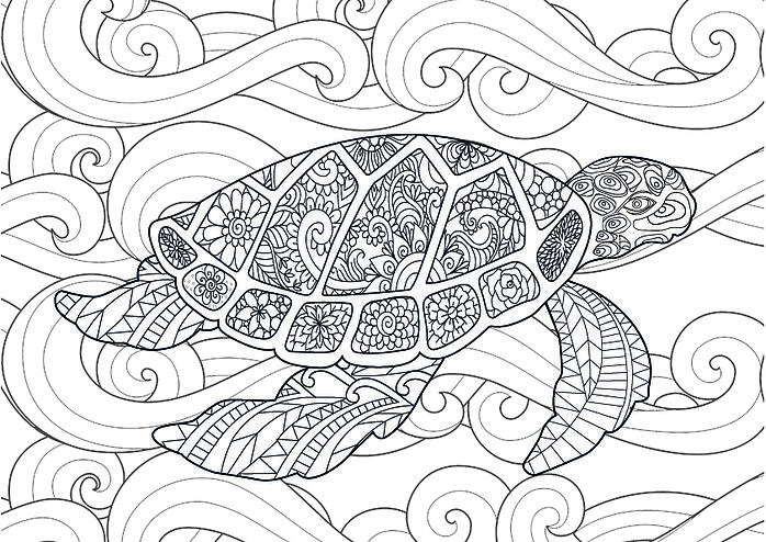 bawahreserve-zentangle-turtle-01