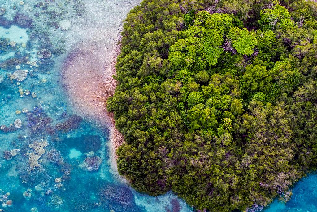 Drone Island 5