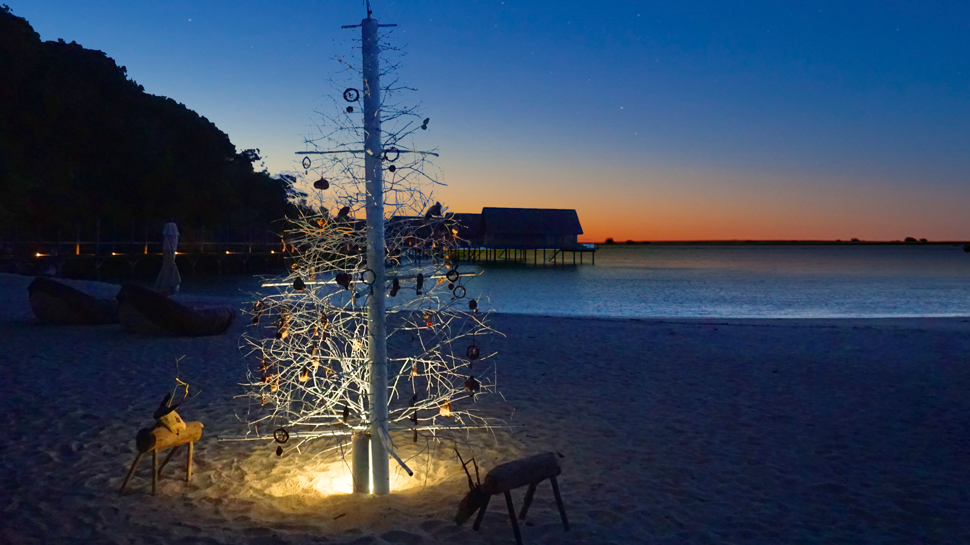bawahreserve-christmas-tree