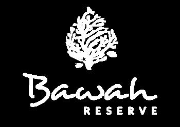 br-white-logo-01@2x