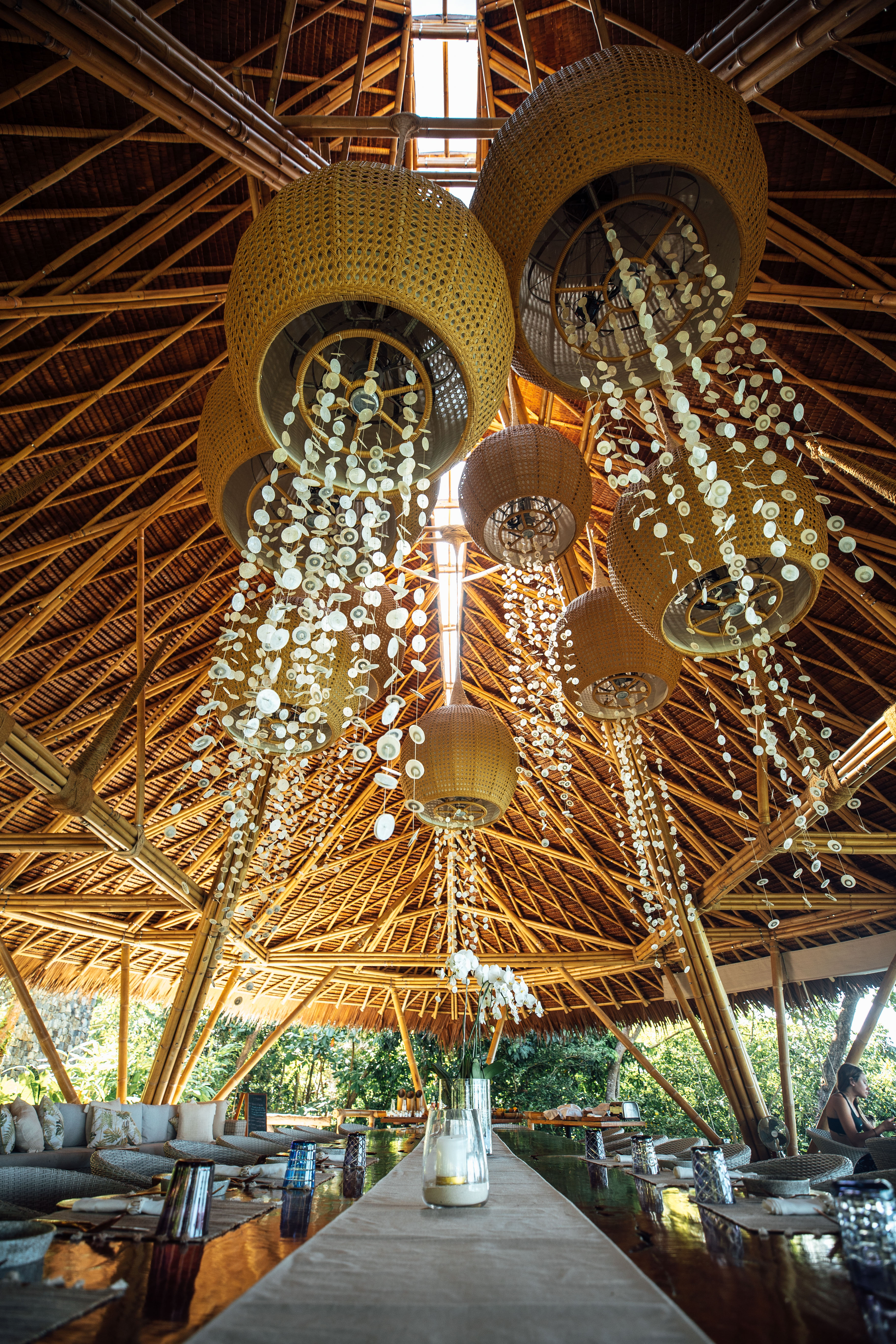 close_up_jellyfish_tentacles_lights_from_wooden_table_treetops