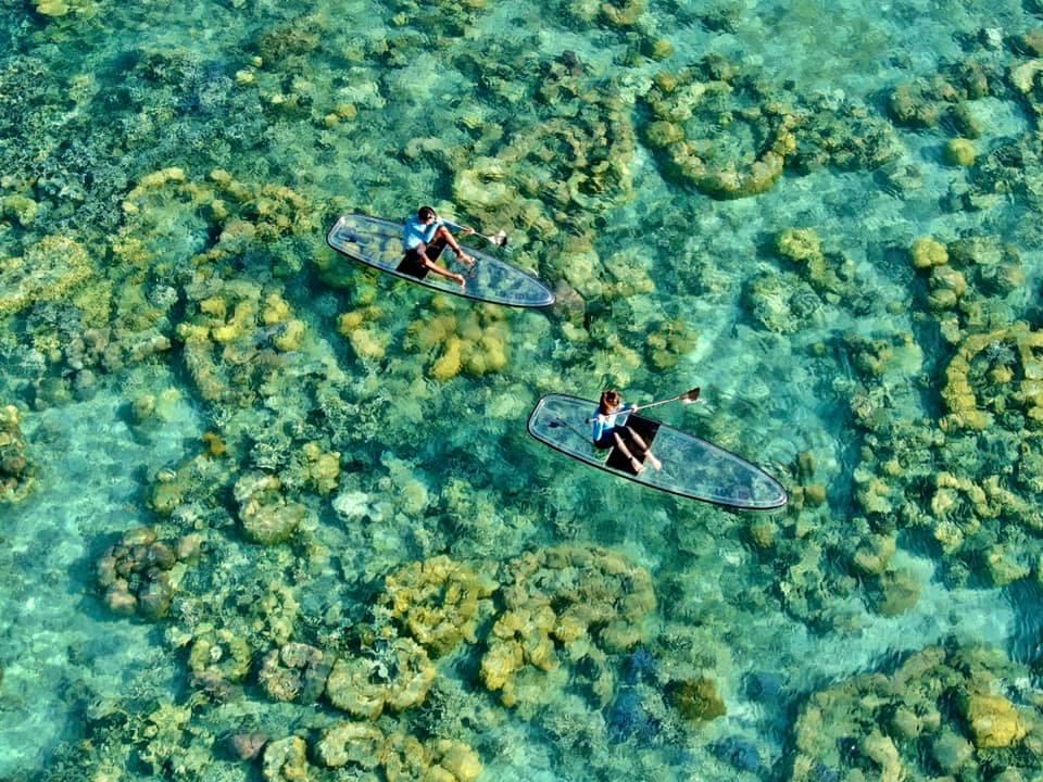 seethrough paddleboard