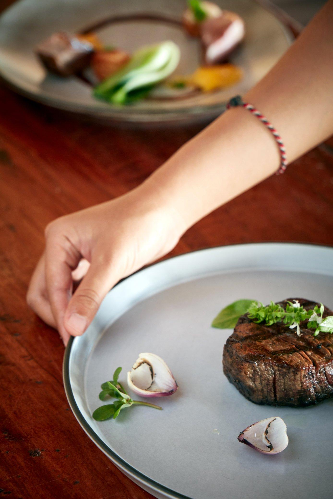 tree-tops-close-up-beef-tendelion-steak-with-onion-garnsh 2