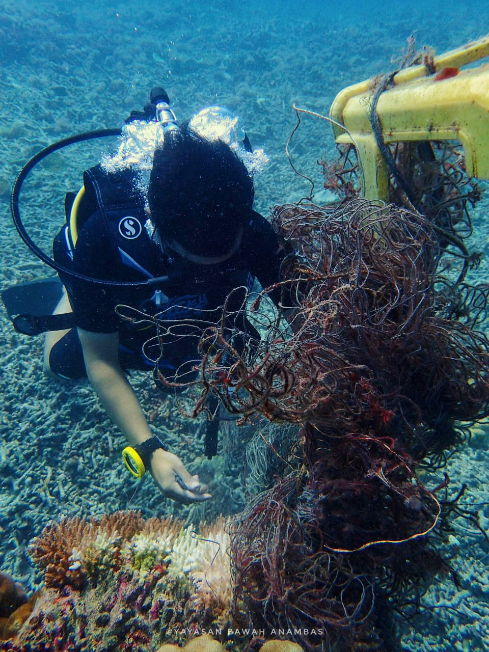 underwater cleanup 2 copy